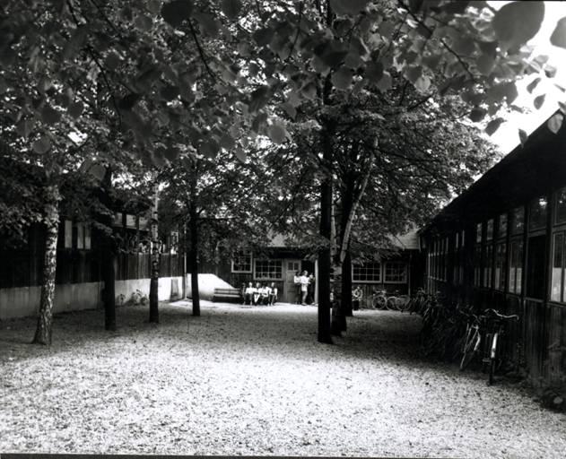Stará škola - Stonožka Polanka